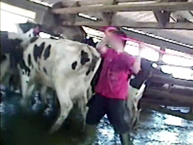 Opponents of 'ag-gag' law plead case to judge