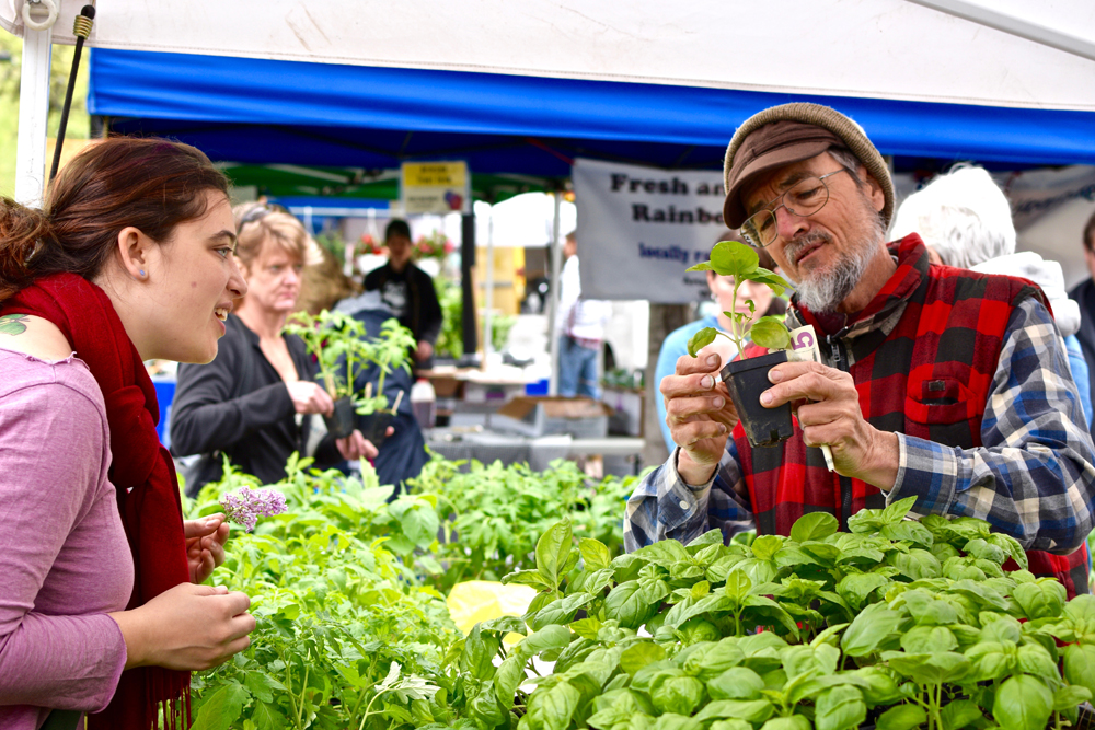 Tips and tricks to navigating Dane County Farmers Market